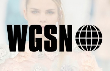 WGSN – GFW 2013